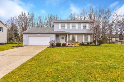 473 S Briarcliff Drive, Canfield, OH 44406 - #: 4078064