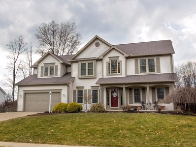 1319 Vineyard Dr, Medina, OH 44256 - MLS#: 4078177