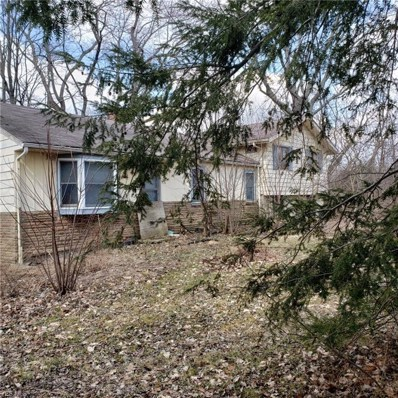 4782 Ridge Rd, Wadsworth, OH 44281 - MLS#: 4078768