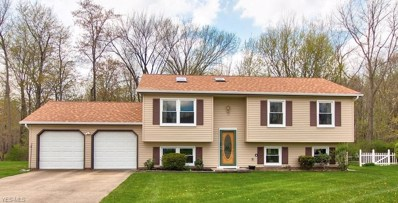 9605 Brayes Manor Dr, Mentor, OH 44060 - #: 4079112