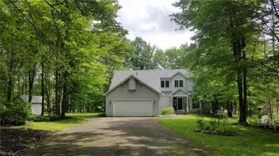 1108 Evening Star Drive, Roaming Shores, OH 44085 - #: 4079290