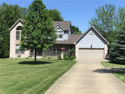 10351 Lincoln Road, Canfield, OH 44406 - #: 4079541