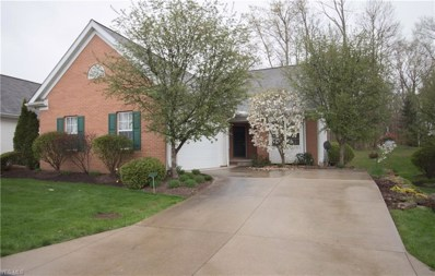 697 Elmwood Point, Aurora, OH 44202 - #: 4079703