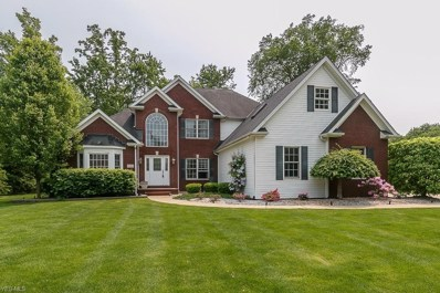 6040 Nature View Court, Concord, OH 44077 - #: 4079847