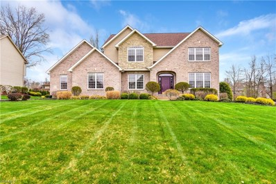 3800 Francesca, Canfield, OH 44406 - #: 4079870