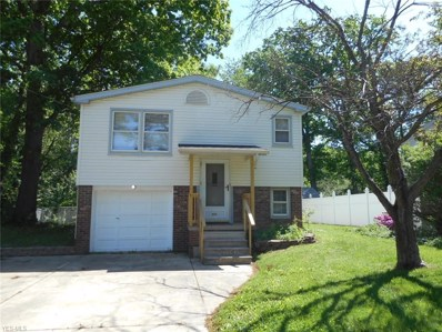 809 Trumbull Drive, Niles, OH 44446 - #: 4079953