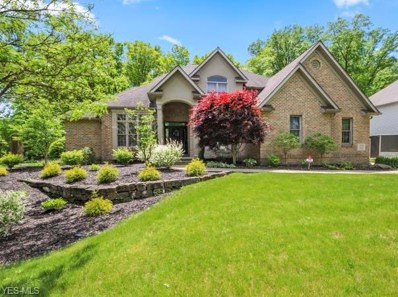 3175 Linden Place, Canfield, OH 44406 - #: 4080018