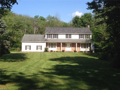 14765 Sleepy Hollow Dr, Russell, OH 44072 - #: 4080278