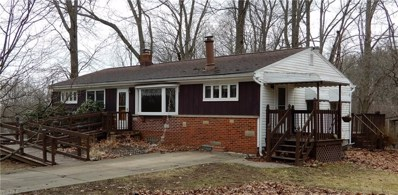 199 Flowerdale Drive, Coventry, OH 44319 - #: 4080379