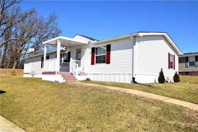 14980 Sprucevale Road UNIT 315, East Liverpool, OH 43920 - #: 4080985