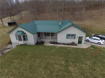 53553 Opossum Run Rd, Senecaville, OH 43780 - #: 4081180