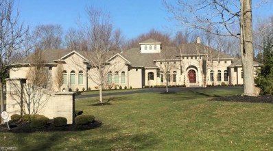 5440 Mission Hills Drive, Canfield, OH 44406 - #: 4081531
