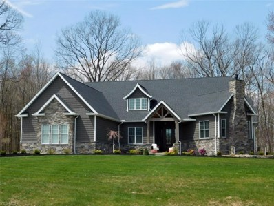 590 Cello Circle, Wadsworth, OH 44281 - #: 4081620