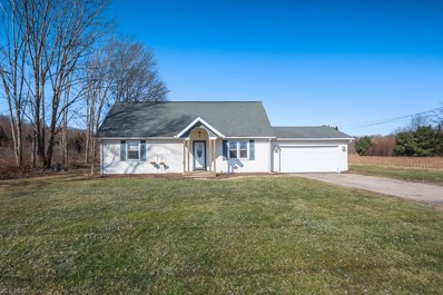 3790 Townline Rd, Perry, OH 44057 - #: 4081756