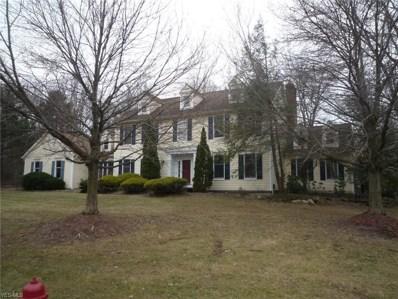 7600 Herrick Park Drive, Hudson, OH 44236 - #: 4081847