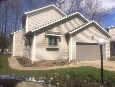 2313 Call Road UNIT 5, Stow, OH 44224 - #: 4082198