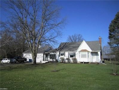9988 West Ridge Road, Elyria, OH 44035 - #: 4082439