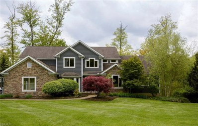 17452 Deepview Dr, Chagrin Falls, OH 44023 - #: 4082553