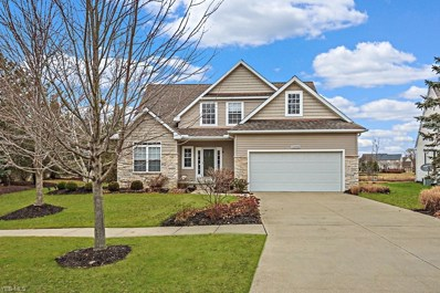 33590 Streamview Dr, Avon, OH 44011 - #: 4083440