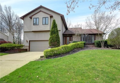 520 Stoneybrook Lane, Canfield, OH 44406 - #: 4083864