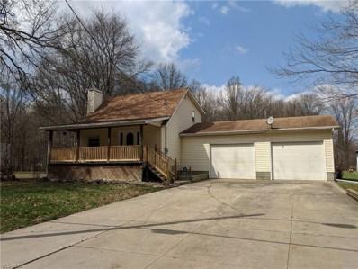4204 Eagle Creek Road, Leavittsburg, OH 44430 - #: 4084319