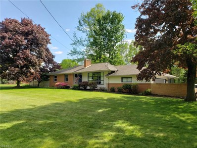 387 Cranberry Run Dr, Boardman, OH 44512 - #: 4084402