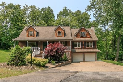 11007 Prouty Rd, Concord, OH 44077 - MLS#: 4084467