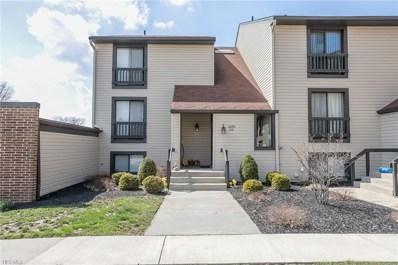 6290 Greenwood Pky UNIT 104, Sagamore Hills, OH 44067 - #: 4084995