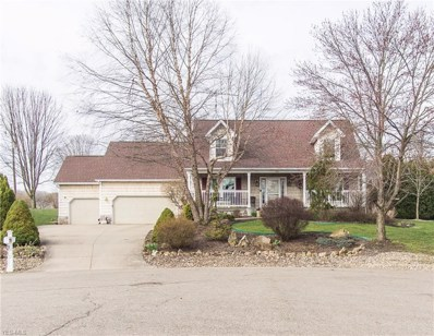 795 Willow Dale Street NW, Bolivar, OH 44612 - #: 4085028