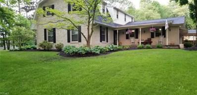 14780 Country Club Lane, Salem, OH 44460 - #: 4085435