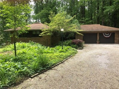 7382 Button Rd, Concord, OH 44060 - MLS#: 4085495