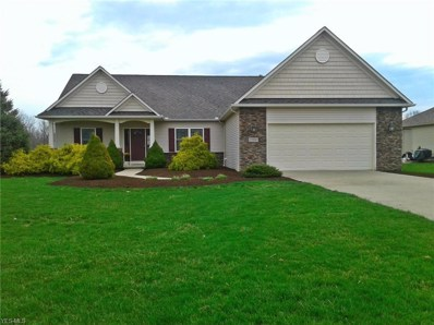 6615 Scenic Woods Dr, Valley City, OH 44280 - #: 4085535