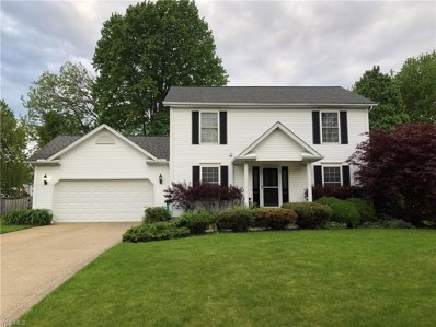 103 Red Pine Drive, Painesville, OH 44077 - #: 4085730