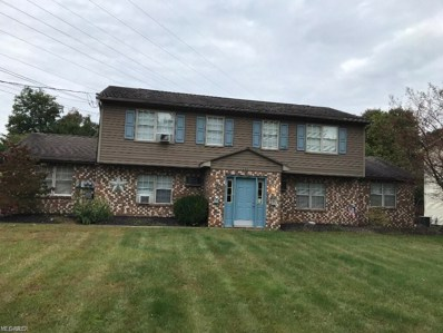 3902 S Schenley Avenue, Youngstown, OH 44511 - #: 4085813