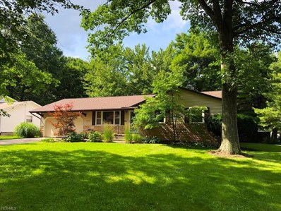 3610 Sandburg Dr, Youngstown, OH 44511 - #: 4085960