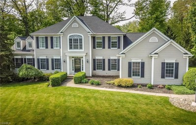 195 Forestview Place, Aurora, OH 44202 - MLS#: 4085990