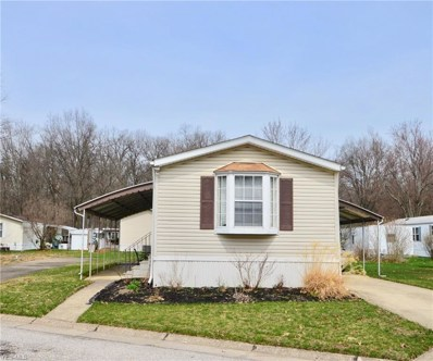22 Scenic Dr, Olmsted Township, OH 44138 - #: 4086031