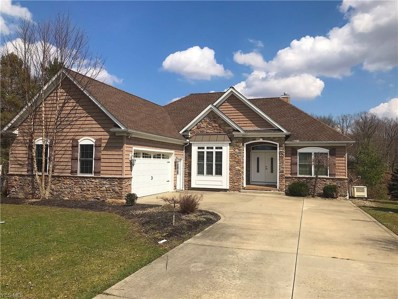 1112 Evening Star Drive, Roaming Shores, OH 44085 - #: 4086034