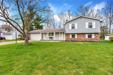 260 Moreland Drive, Canfield, OH 44406 - #: 4086051
