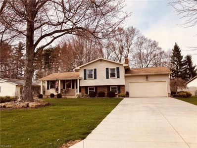 263 Waggaman Cir, Youngstown, OH 44512 - MLS#: 4086371