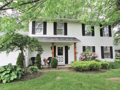 1481 Welch Road, Painesville Township, OH 44077 - #: 4086493