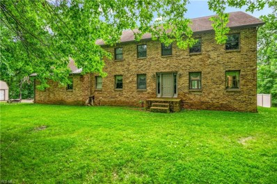 4600 S Raccoon Road, Canfield, OH 44406 - #: 4086579