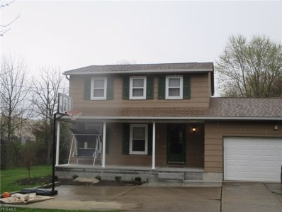 3345 S Raccoon Road, Canfield, OH 44406 - #: 4086660