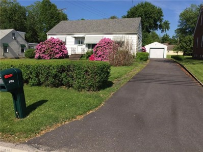 7103 Hopkins Road, Mentor, OH 44060 - #: 4086743