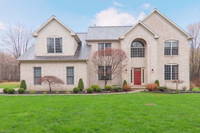 4766 Forest Grove Drive, Brunswick, OH 44212 - #: 4086857