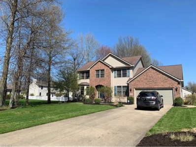 1025 Wicklow Ct, Grafton, OH 44044 - #: 4087284