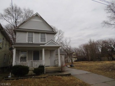 3407 E 117th Street, Cleveland, OH 44120 - #: 4087723