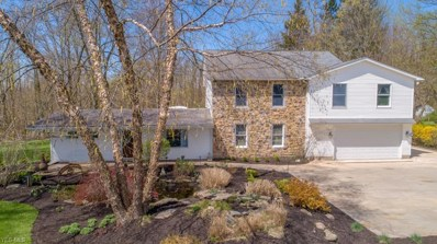 17460 Snyder Road, Chagrin Falls, OH 44023 - #: 4087972