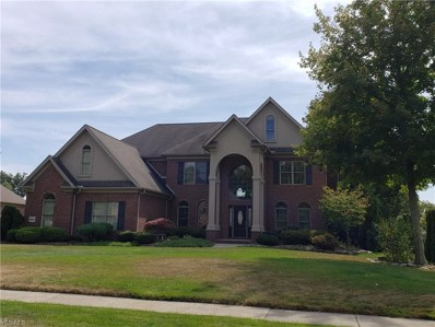 6841 Kyle Ridge Pointe, Canfield, OH 44406 - #: 4087989