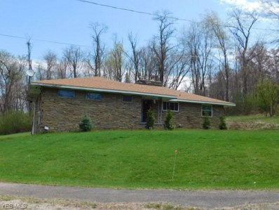 4519 Rear Sunset Boulevard, Steubenville, OH 43952 - #: 4087996
